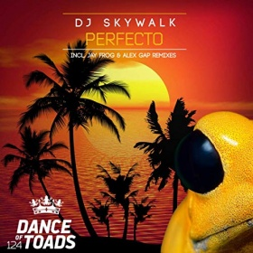 DJ SKYWALK - PERFECTO